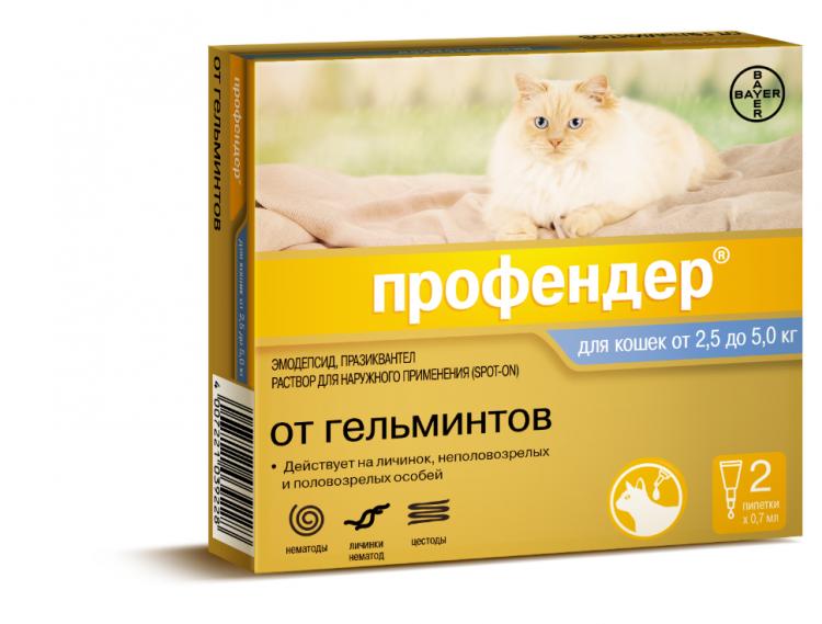 определить, профендер или инспектор для кошек что лучше термобелья Craft Baselayer